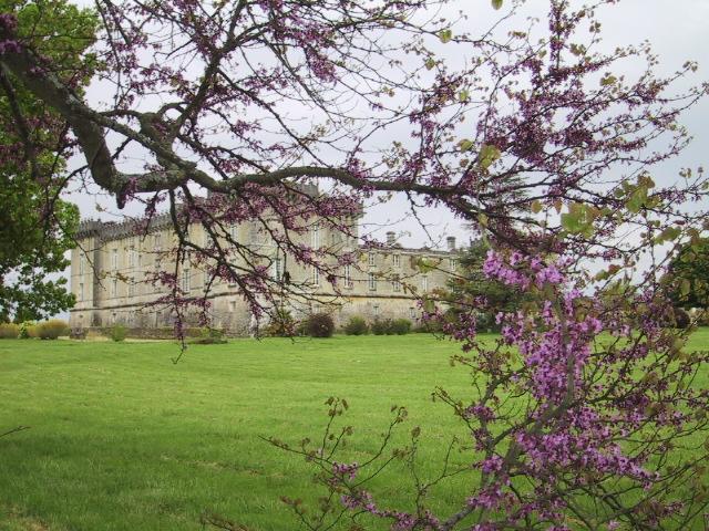 Château Chesnel à Cherves-Richemont - 1