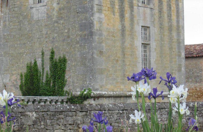Château Chesnel à Cherves-Richemont - 2