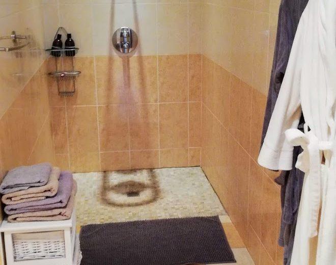 Chambres d'hôtes – Le Domaine des Platanes à Bourg-Charente - 2