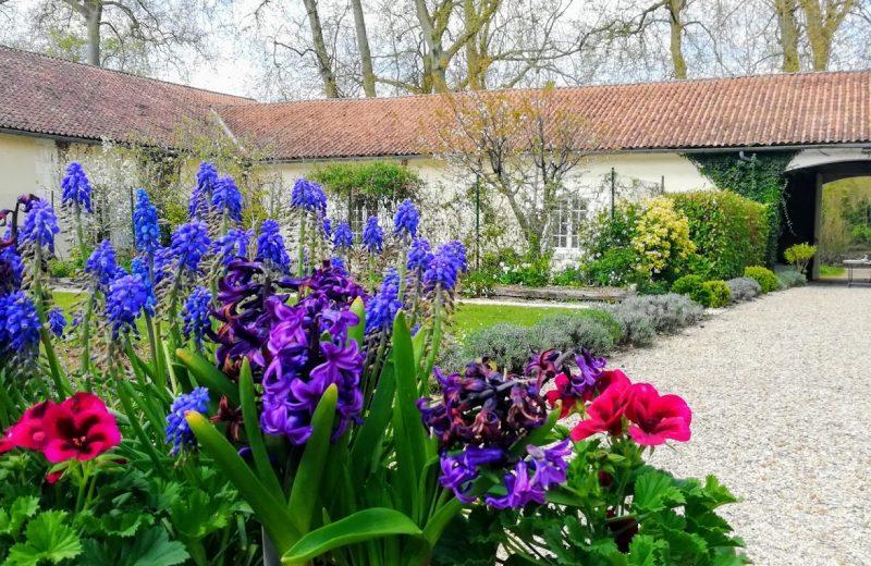 Chambres d'hôtes – Le Domaine des Platanes à Bourg-Charente - 11