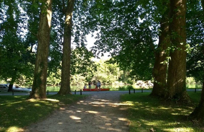 Chambres d'hôtes – Le Domaine des Platanes à Bourg-Charente - 16