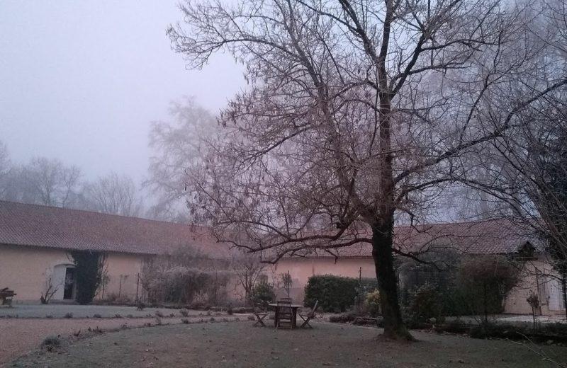 Chambres d'hôtes – Le Domaine des Platanes à Bourg-Charente - 27