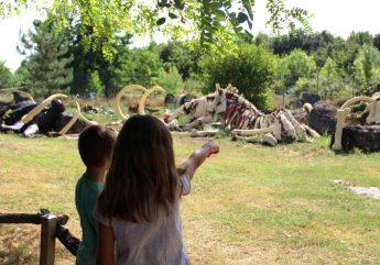 Cimetière mammouths