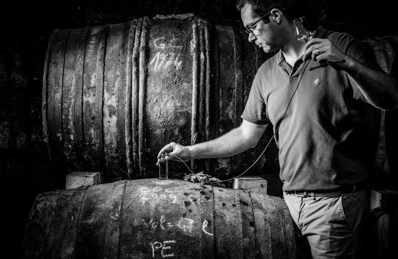 Cognac Pasquet à Bellevigne - 5