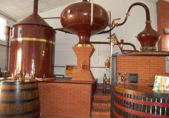 Étapes du Cognac