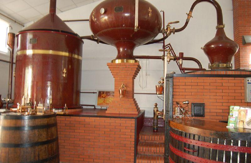 Domaine de Bel Ange – Pineau Cognac à Échebrune - 0