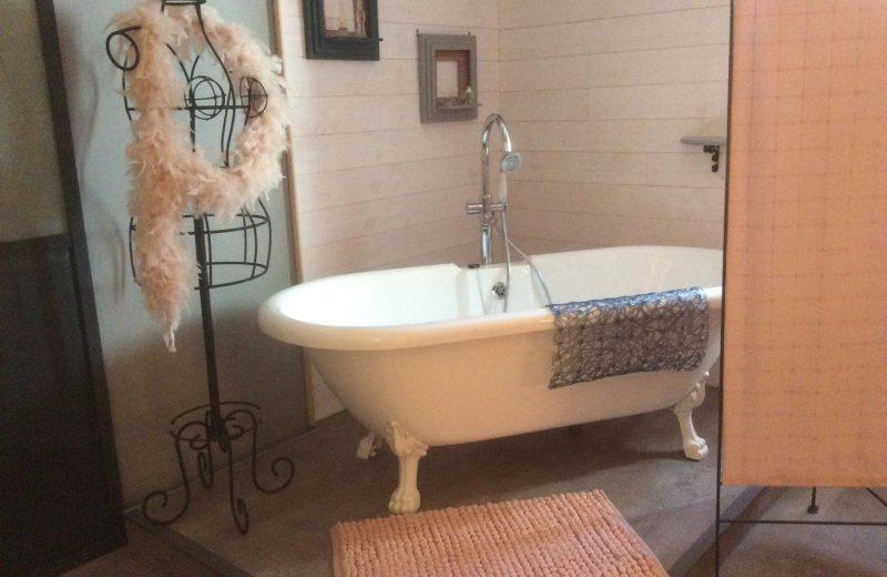 Chambres d'hôtes – Le Grillage à Poules à Gensac-la-Pallue - 5