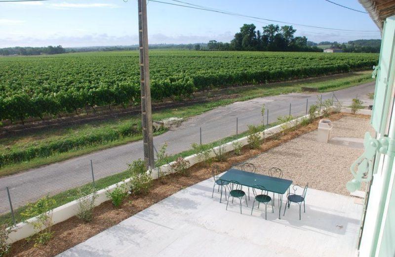 Meublé_jusqu'à 6pers – Gîtes de la Tacharderie – Côté vignes à Cherves-Richemont - 12