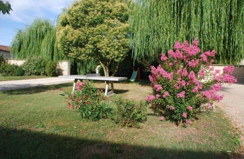 Meublé_jusqu'à 6pers – Gîtes de la Tacharderie – Côté vignes à Cherves-Richemont - 13