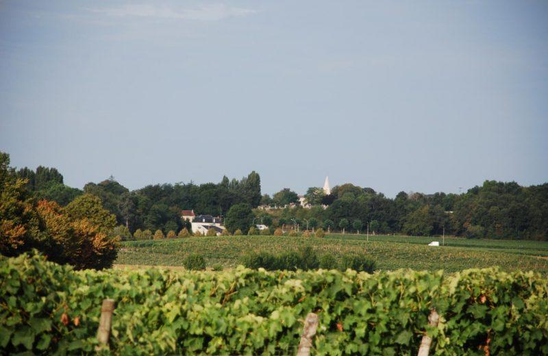 Meublé_jusqu'à 6pers – Gîtes de la Tacharderie – L'alambic à Cherves-Richemont - 13