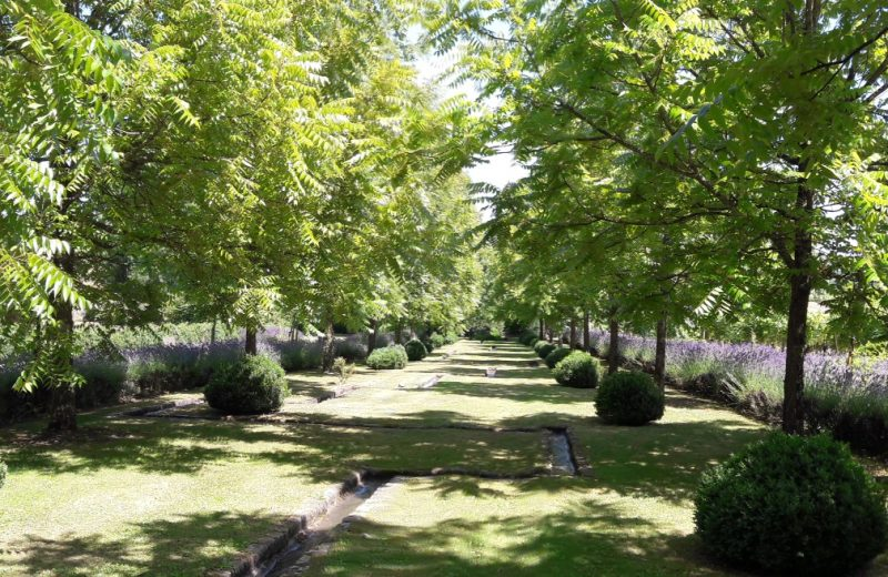 Les Jardins du Chaigne à Bellevigne - 3