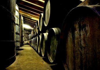 Chais de Cognac – Domaine Raymond Bossis