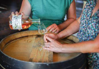 Conte et Fille – Domaine viticole familliale à Chillac
