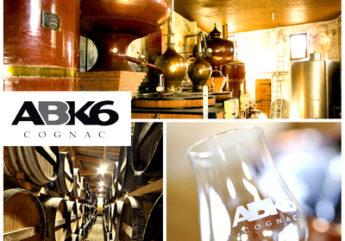 ABK6-VIGNETTE-2014.jpg