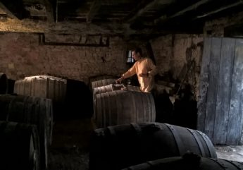 Cognac-Raison-Personnelle-copyright-Bruno-Boucard.jpg