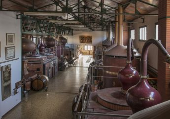 Cognac-distillerie-des-moisans-angouleme-1-_1.jpg