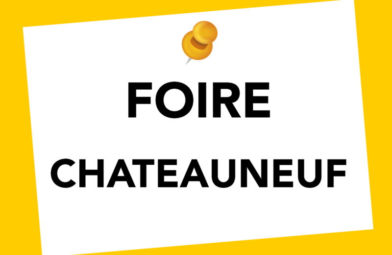 FOIRE MENSUELLE à CHATEAUNEUF SUR CHARENTE - 0