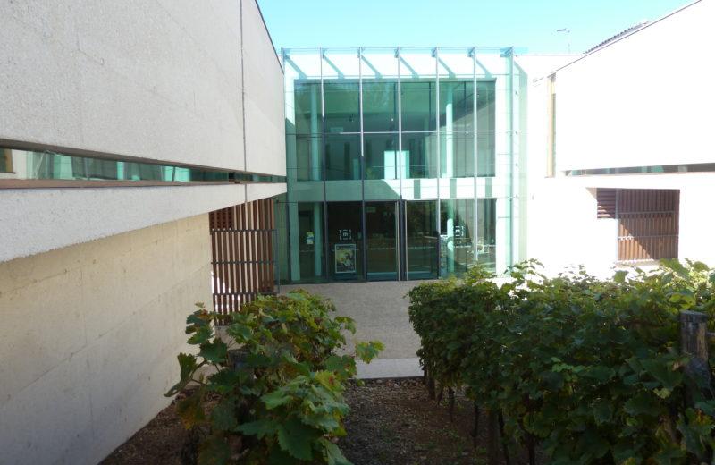 MUSÉE DES ARTS DU COGNAC à COGNAC - 9