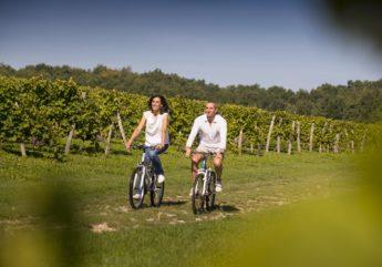 balade-yo-vy-lo-dans-les-vignes-mariot-christophe-charente-tourisme.jpg