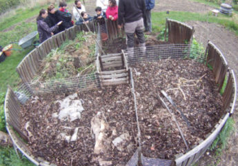 compost-jardin-respectueux.jpg