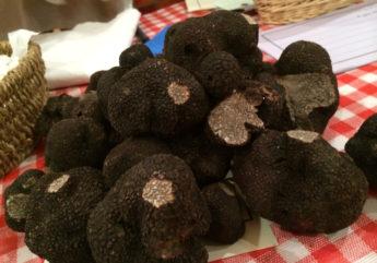 mmarche-aux-truffes-jarnac-charente-tourisme.jpg